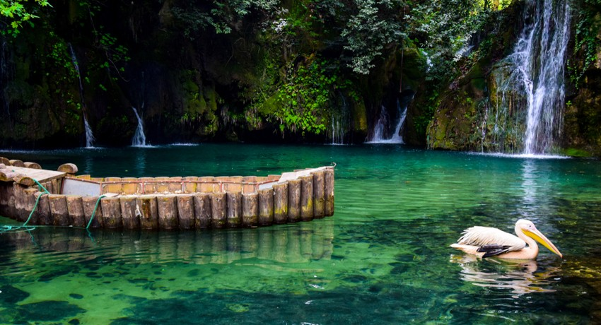 Holiday Packages in Lebanon